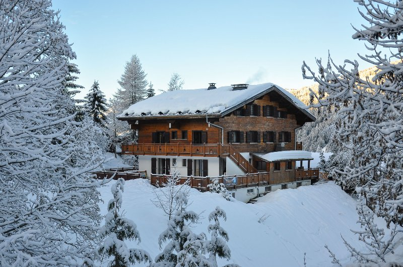 Wessex - 4 bedrooms, log fire, sleeps up to 10, ski back, great value, location de vacances à Les Gets