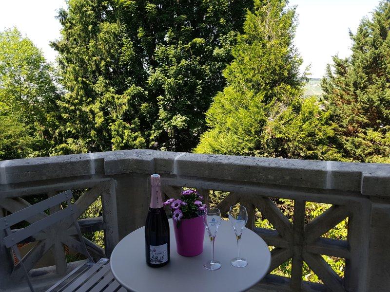 La Demeure d'Elodie, location de vacances à Chavot-Courcourt