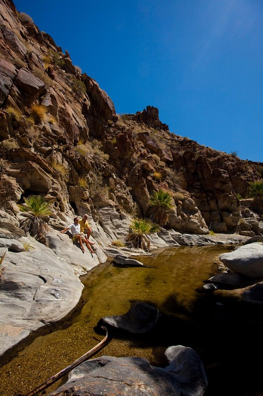 Hikers at Indian Canyons near Palm Springs CA
