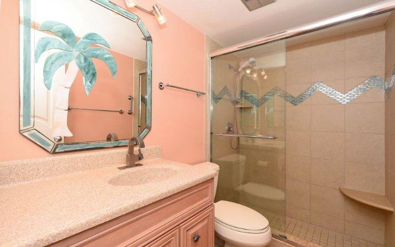 Walk-In Shower in Guest Bathroom