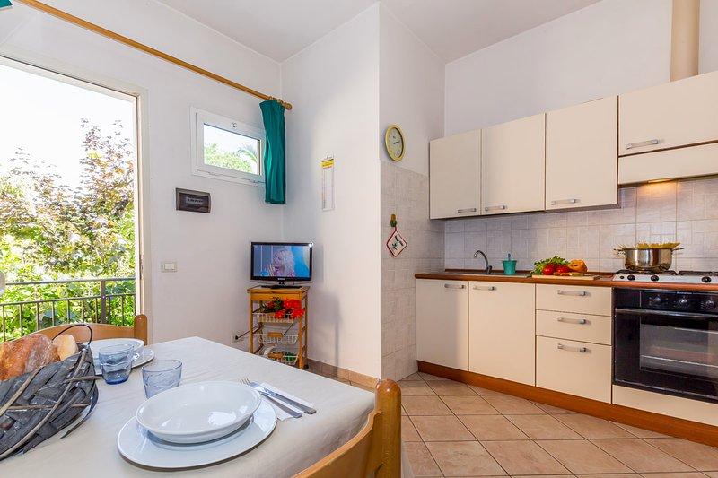 Daniela 4, vacation rental in Ronchi