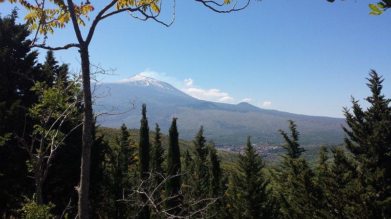 Etna View from Nebrodi Park