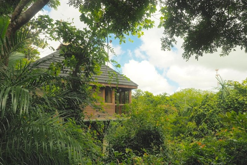 Jungle Canopy Bungalow at Taru Rentals, holiday rental in Montezuma