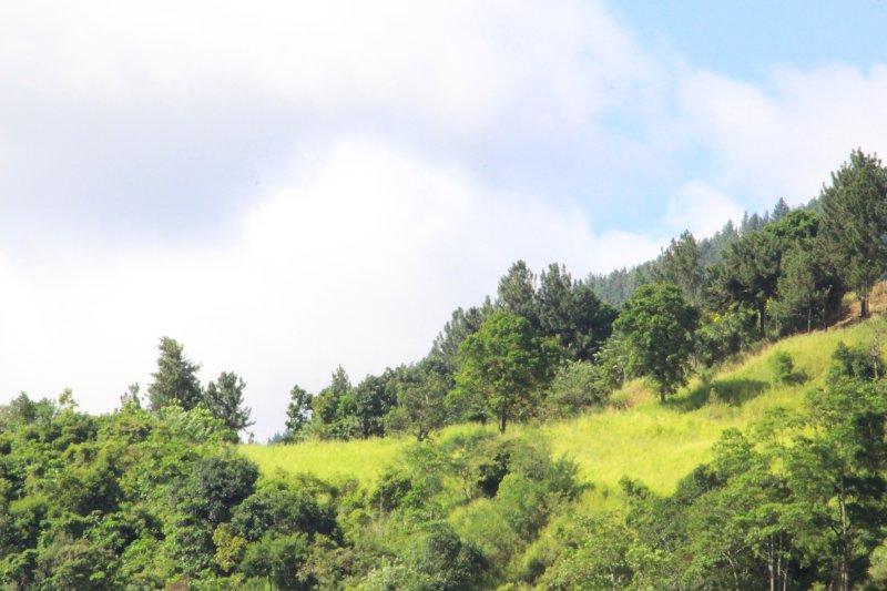 Blick auf die Berge von der Wohnung entfernt.