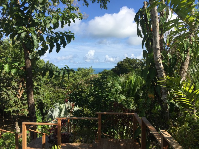 Ocean View Studio at Taru Rentals, holiday rental in Montezuma