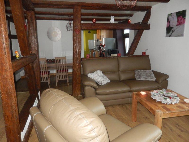 Loue gîte proche de Riquewihr, location de vacances à Riquewihr