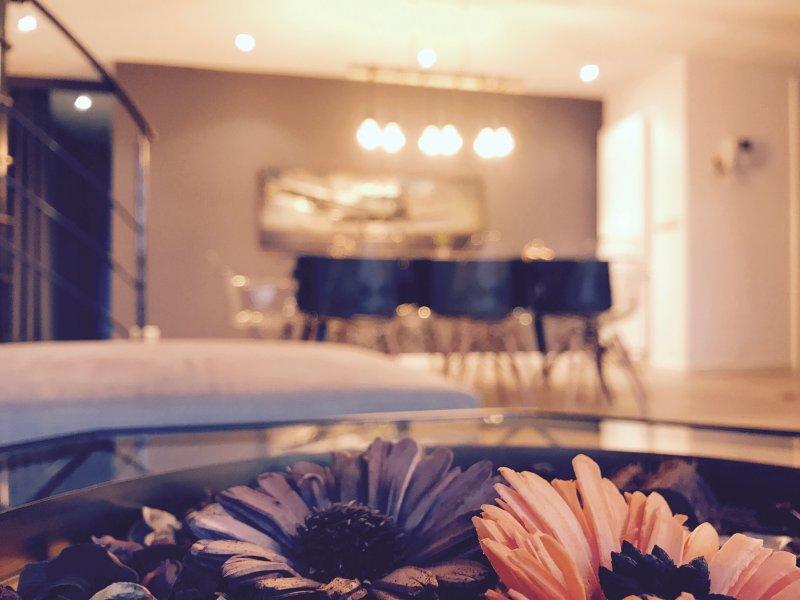 Modern Loft Penthouse, vacation rental in Jette
