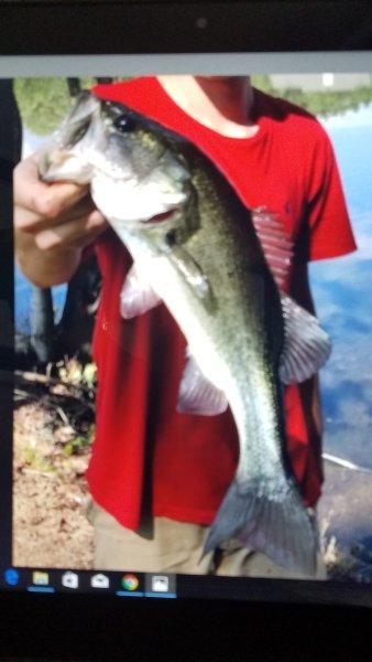 Conheça pelos moradores para sua pesca incrível, nosso lago de 30 acres está bem abastecido para os nossos clientes para peixe