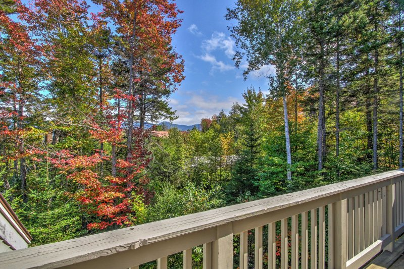 Cozy Ski-in/Ski-out Condo on Bretton Woods Ski Mtn, vacation rental in Bretton Woods