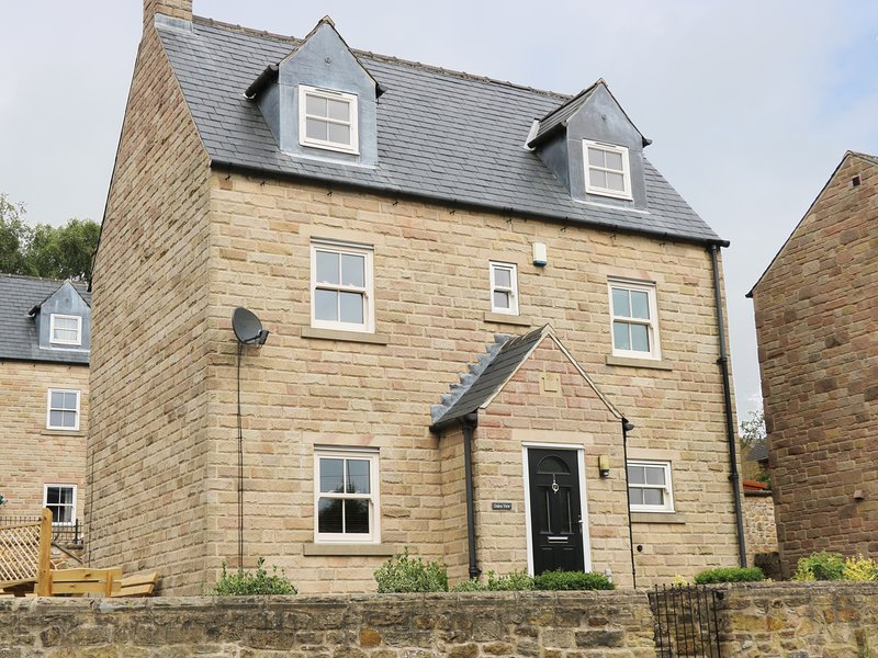 DUKES VIEW, detached cottage, WiFi, Smart TV with Sky, close to amenities, in, holiday rental in Two Dales