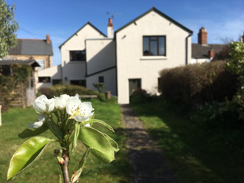 GREENGATES, family holiday home, three bedrooms, WiFi, parking, garden, in, holiday rental in West Quantoxhead