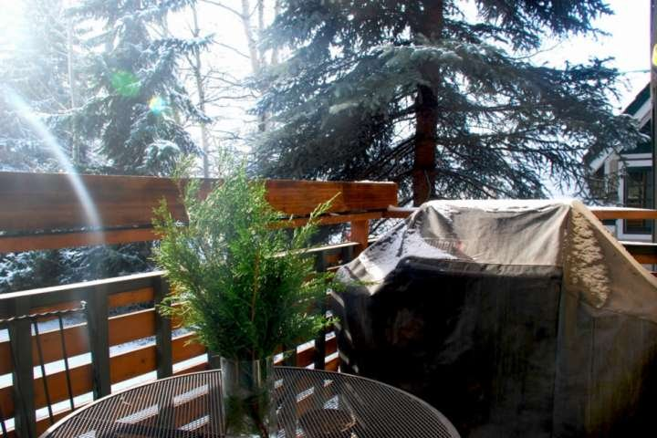 The outdoor patio with gas grill is a perfect spot for relaxing on a warm sunny day any time of the year.