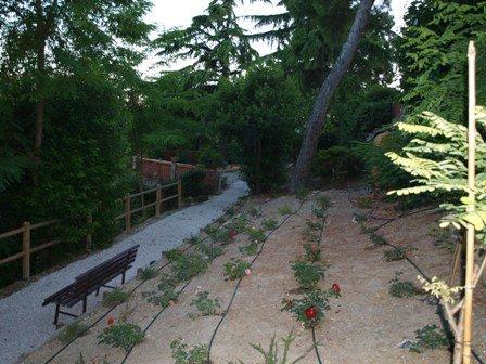 une promenade dans le grand jardin