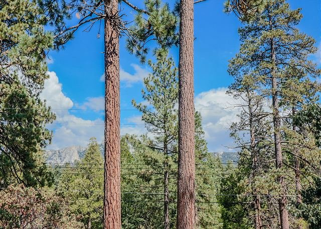 Cedar Glen: Romantic Mountain Chalet w/ Views, Perfect for Couples with spa, holiday rental in Idyllwild