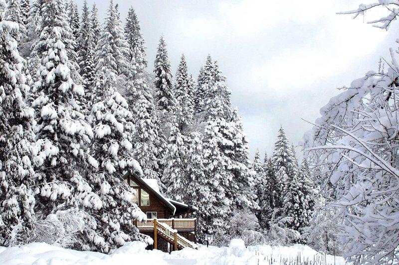 Från hemmet kommer du bara 13,3 miles från Mt. Shasta Ski Park!