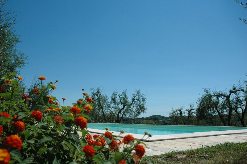 l 'apartment Bosco Set in 7 hectares of forest and olive trees with a rooftop swimming pool cottage wit