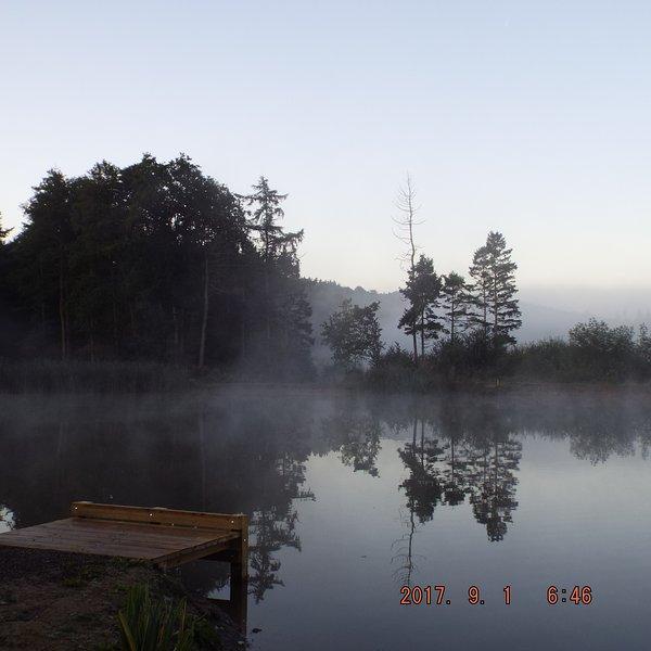 Mornining mist