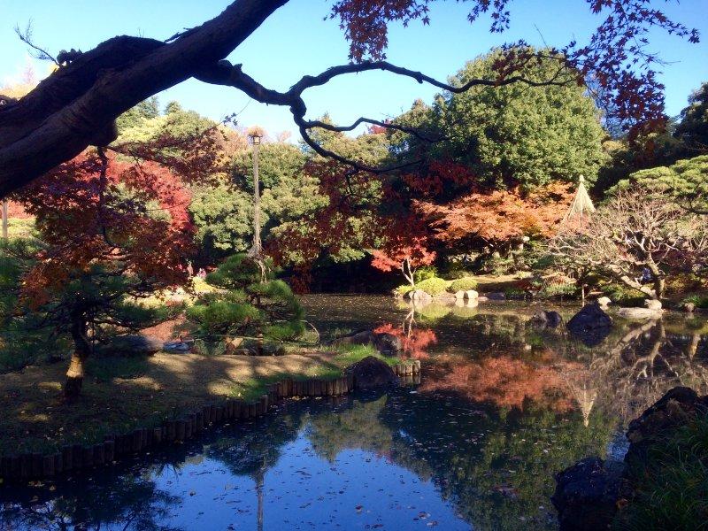 Kyu-Furukawa Garden, à 10 minutes à pied de cet appartement.
