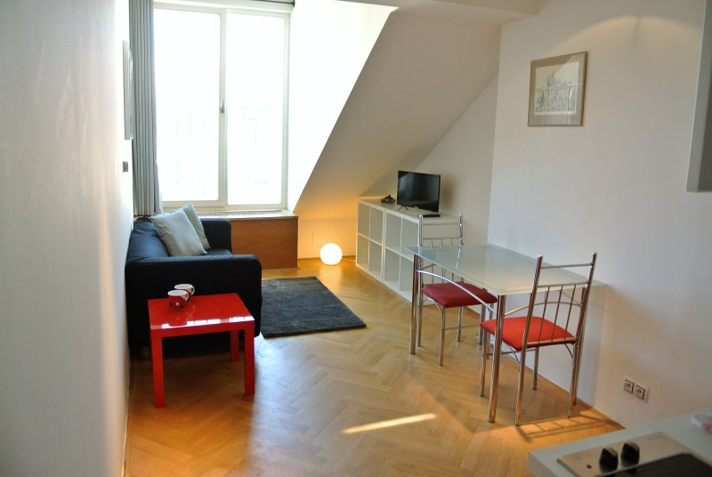 Charming and uniquely spaced Duplex apartment - easy walking to all main places, holiday rental in Roztoky