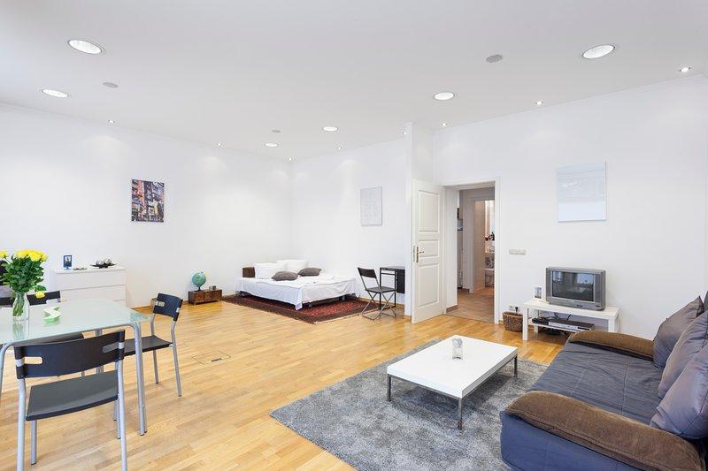 Muito espaçosa sala de estar com possibilidades de dormir