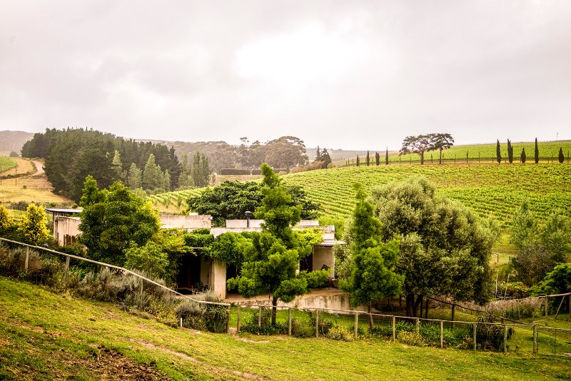 Charming cottage on the Hermanus Wine Route | Hemel-en-Aarde Valley, casa vacanza a Overberg District