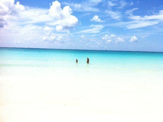 Beach,Coast,Outdoors,Sea,Water