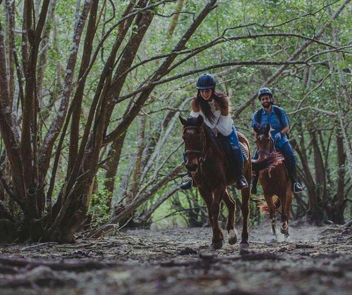 Paardrijden bij het Barat National Park.