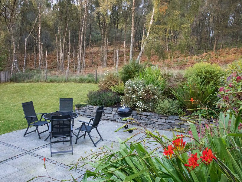 Back garden and patio with views over silver birch forest