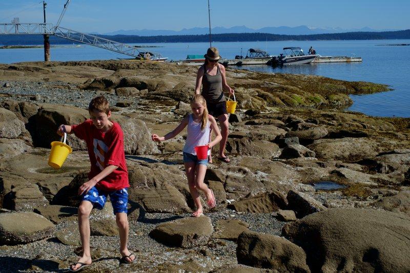 Explorar à beira-mar