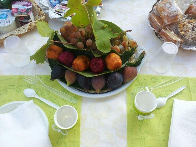 nuestra fruta
