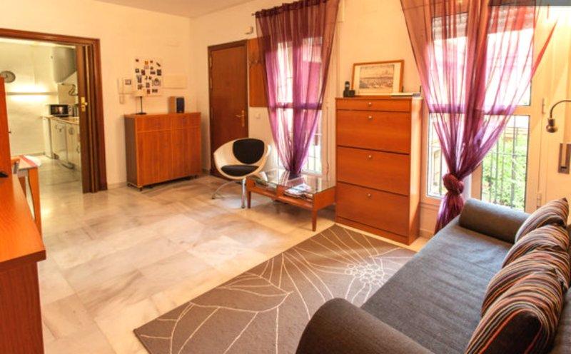 Great Triana Apartment on Pedestrian Street. Sevilla., alquiler de vacaciones en Sevilla