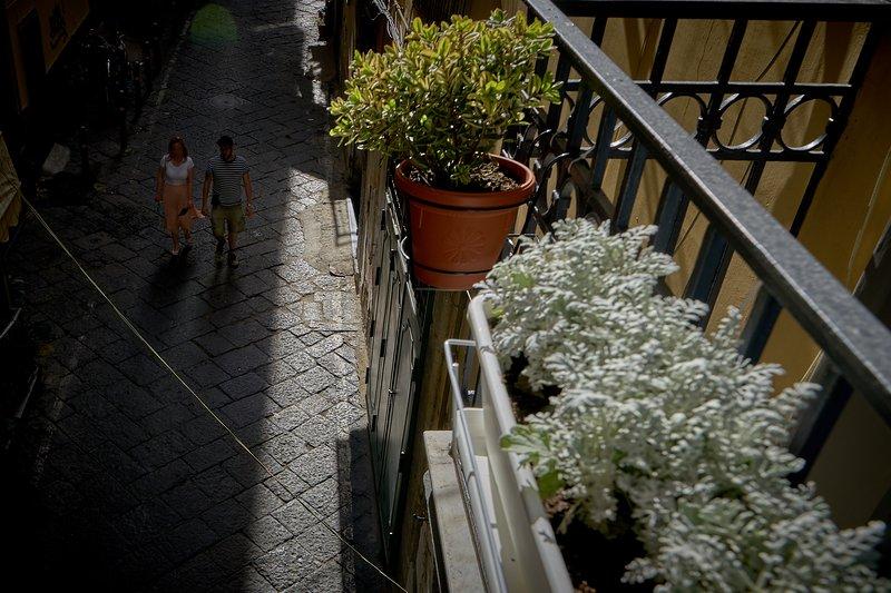 Vista da estrada que conduz à Capela de São Severo a partir da varanda do quarto