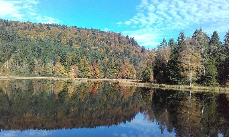 Lispach estanque en otoño