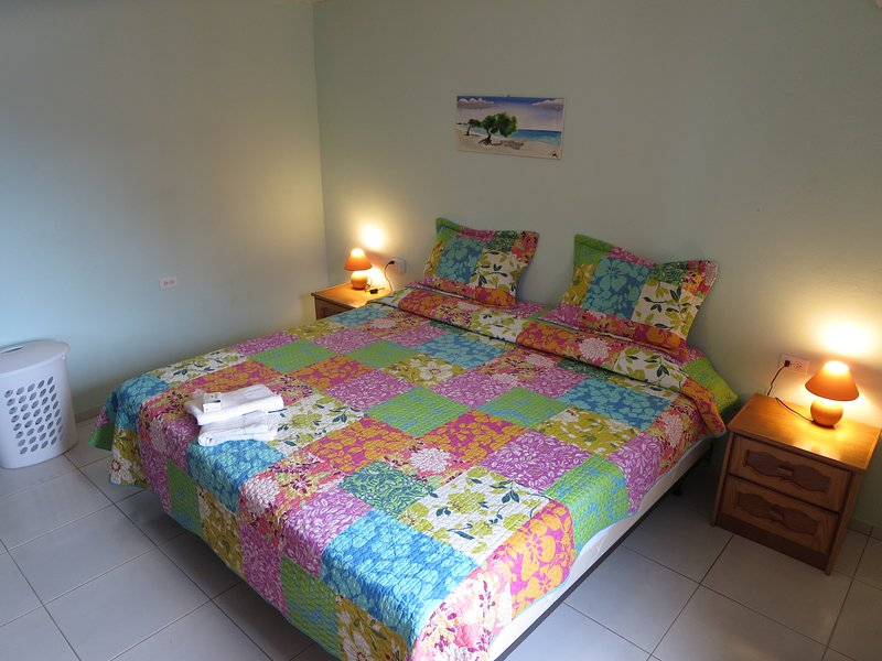 Bedroom with King size double box spring and slit level AC