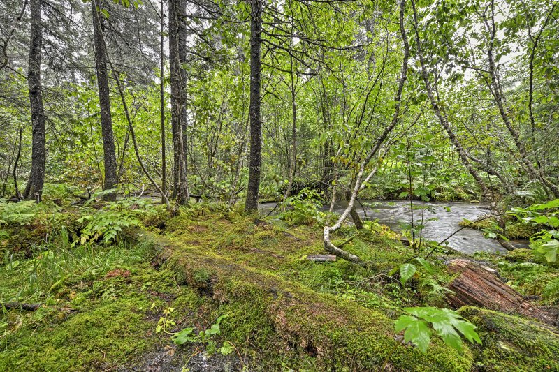 Walk to the creek and enjoy salmon fishing during your next Alaskan getaway!