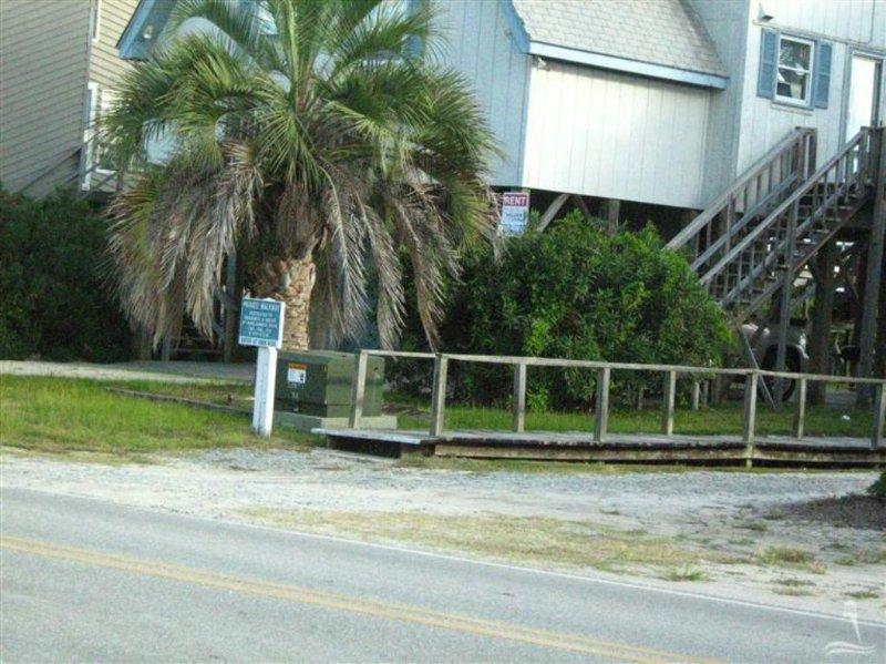 Bench,Building,Tree,Palm Tree,Yard