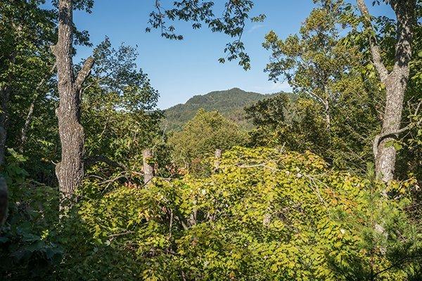 Mountain Valley Hideaway