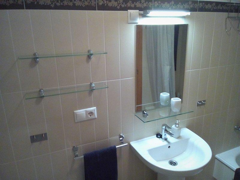Large bathroom sink.
