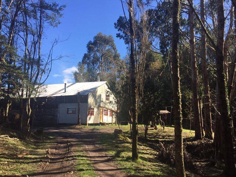 Cabaña  Rural  Pindaco Chiloe arrendamos en lugar mágico y tranquilo, Chiloé ..., vacation rental in Chonchi