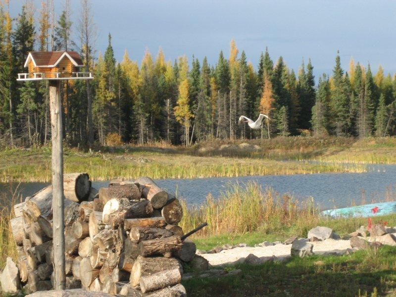 Cedar Creek Resort & RV Park, holiday rental in Manitoba