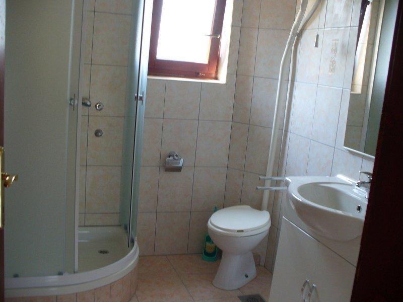 A3 Veliki (4+2): bathroom with toilet