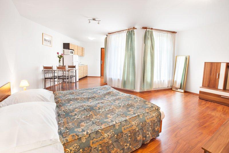 Apartment studio for three persons in the City center, location de vacances à Radonice