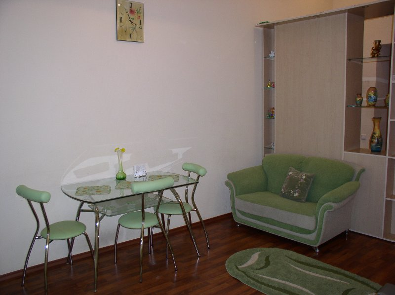 One-room. 19a Volodymyrs'ka St. Centre of Kiev, holiday rental in Kyiv (Kiev)