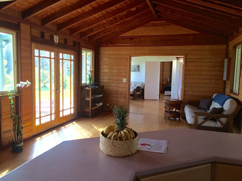 Aina Mana Hale (home on land of sacred power) 3 bdr 2 bath ocean view home, vacation rental in Laupahoehoe
