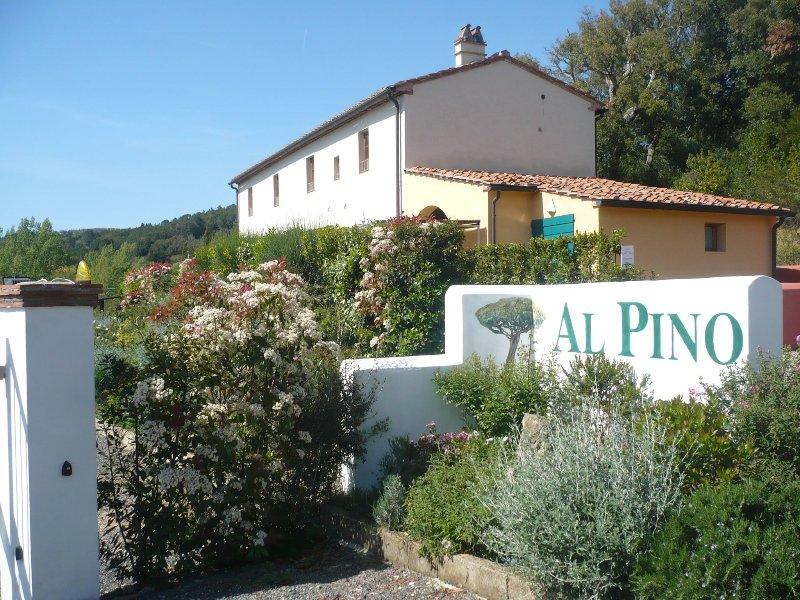 Casale al Pino bilocale  2 posti, holiday rental in Riparbella