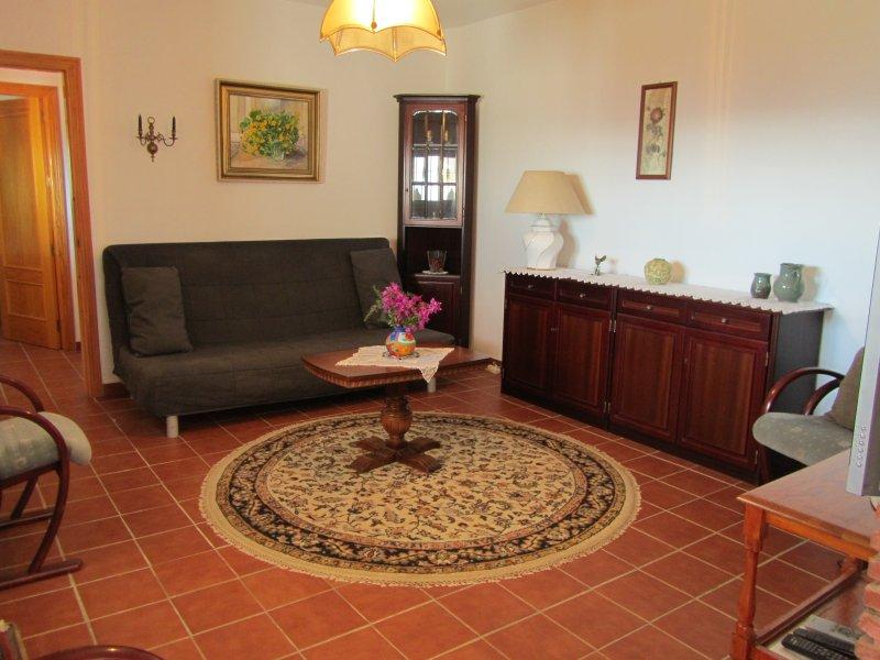 El salón, el sofá-cama sueco se despliega en una cama doble-si es necesario - realmente cómodo.