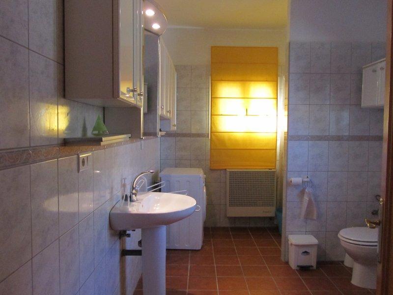 El baño - equipado totalmente con lavadora.