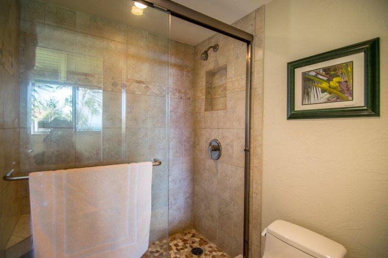 Separate shower/toilet area with pocket door.