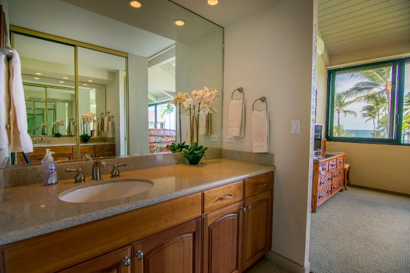 Sink area also has large closet.