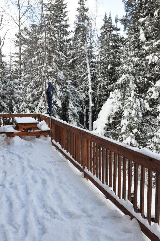 Ninja log home - Winter